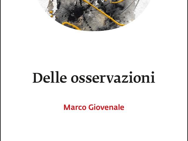 """Su """"Delle osservazioni"""" di Marco Giovenale"""