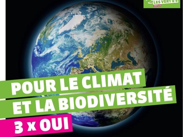 Referendum in Svizzera: bocciata la Legge CO2. Quando la democrazia diretta ti mette nei guai