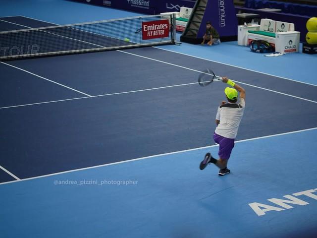 ATP Anversa: la favola di Sinner si ferma in semifinale