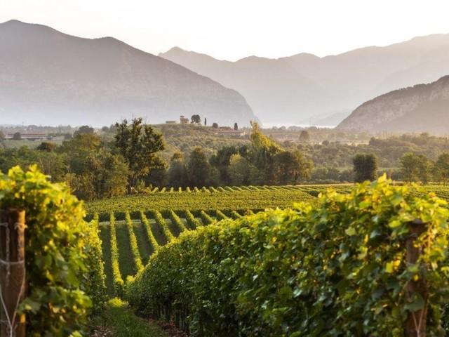 Franciacorta, torna il Festival per i wine&food lovers