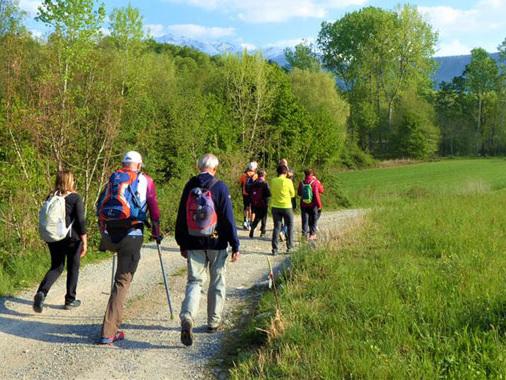 Devicenzi, il viaggio sulla Via Francigena prosegue: le prossime tappe tra piacentino e parmense
