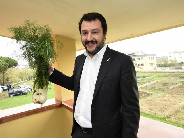 """Droghe, Matteo Salvini dichiara guerra ai negozi di cannabis: """"Oggi arriva direttiva per chiuderli"""""""