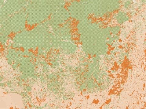 Sparisce un pezzo di Amazzonia ogni anno. Gli incendi, la deforestazione e l'impatto sull'economia globale