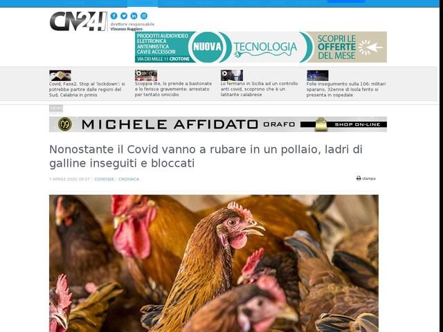 Nonostante il Covid vanno a rubare in un pollaio, ladri di galline inseguiti e bloccati