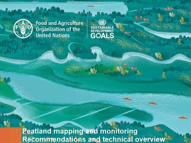 La mappatura e il monitoraggio delle torbiere migliorati grazie al lavoro della Fao