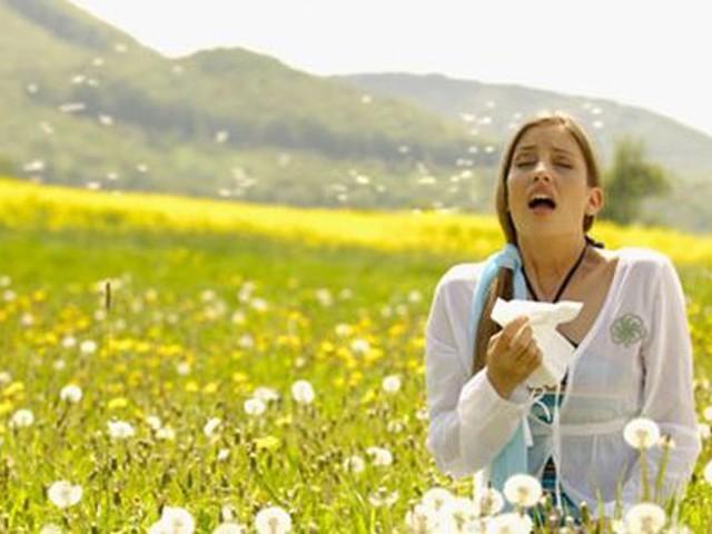 Le allergie ai pollini durano tutto l'anno