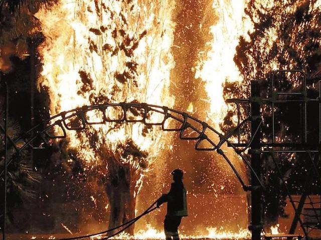 Vasto incendio a Monfalcone: in fiamme i cipressi del parco della Rimembranza
