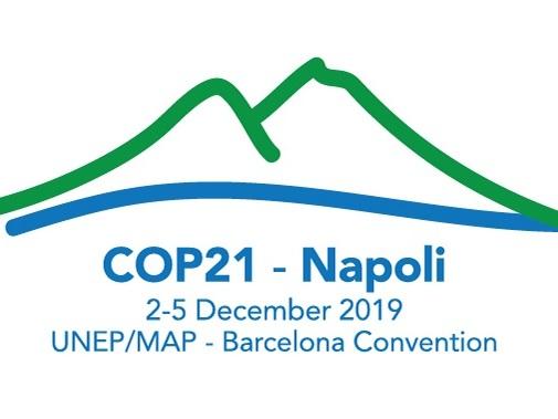 Tutela del Mediterraneo: la Convenzione di Barcellona approva la Dichiarazione di Napoli (VIDEO)