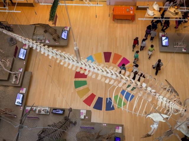 Al Muse di Trento da oggi festival della sostenibilità fra scienza e ambiente