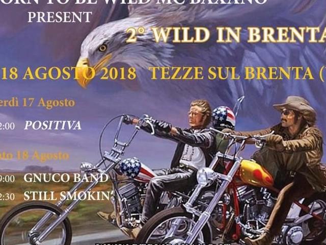 2 Wild in Brenta al Parco dell'Amicizia
