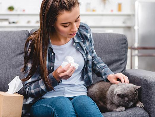 Allergia al gatto: ecco come non rinunciare al proprio animale