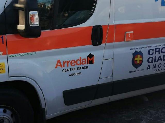 Ancona: punto da un calabrone, va in shock anafilattico. Soccorso un 75enne