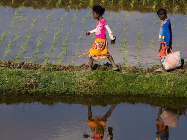 Africa, Piano Marshall o securizzazione degli aiuti?