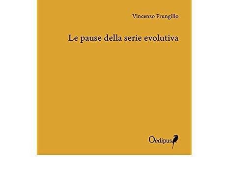 Vincenzo Frungillo: Le pause della serie evolutiva