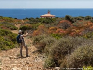 Turismo sostenibile nell'Arcipelago Toscano: fare rete e condividere azioni