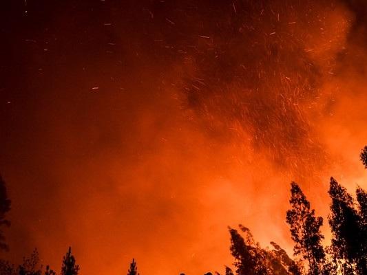 Gli incendi nel mondo stanno aumentando?