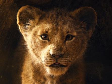 Il Re Leone domina gli incassi, oltre 26 milioni al box office