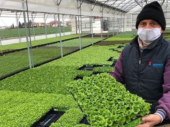 Un orto in ogni giardino: parte l'iniziativa di CIA est Lombardia