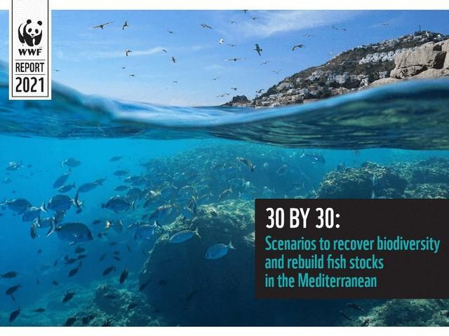 Tutelare il 30% del Mediterraneo per rigenerare la biodiversità e sostenere la pesca. Italia in forte ritardo