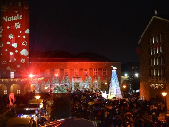 Natale d'Amore, Pomezia accende i suoi alberi: tanti eventi fino al 6 gennaio
