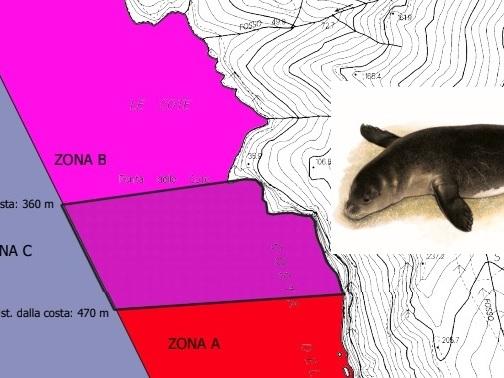 La Foca monaca di Capraia e l'Area marina protetta dell'Arcipelago Toscano che aspetta da 38 anni