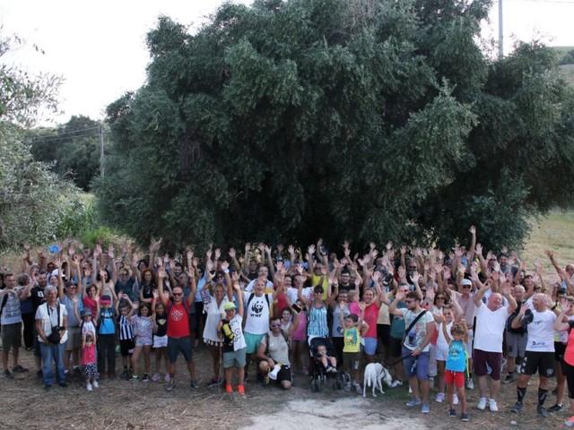 Dall'ulivo millenario all'elmo ostrogoto del Borsacchio: grande evento per promuovere la riserva