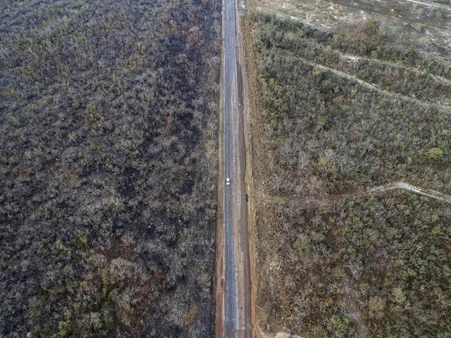 L'Amazzonia in cenere e Bolsonaro manda 44mila soldati