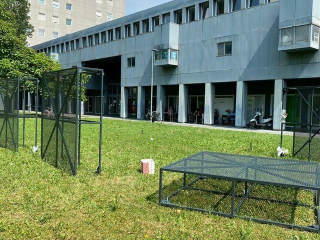 Arcella In & Out: gli studenti e il quartiere che sognano