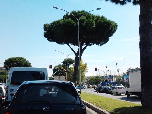 Atleta morta a Ostia: fascicolo in procura, domani i funerali