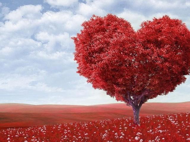 Oroscopo e classifica sull'amore di novembre: progetti per lo Scorpione, Gemelli gelosi