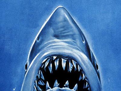 Lo squalo: trama, recensione, cast, attori e trailer del film Jaws