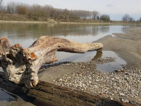 AIPO e Ministero Ambiente, webinar su 'Consumo di suolo e rischio alluvioni'