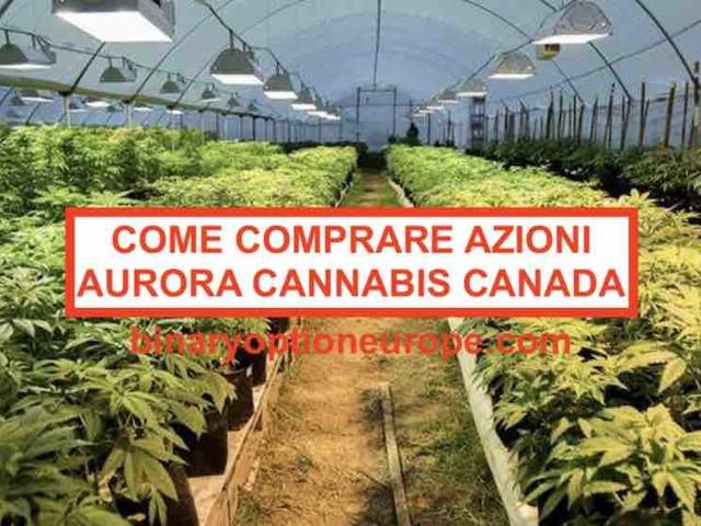 Come comprare azioni Aurora Canada Cannabis: guida completa italiana