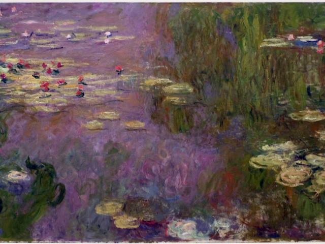 Il Monet restaurato: sotto uno dei suoi Glicini spuntano ancora le Ninfee
