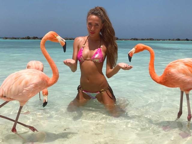 Flamingo beach: ecco la spiaggia dove fare il bagno con i fenicotteri rosa