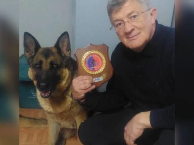 È morto Laga, il cane eroe del terremoto di Amatrice