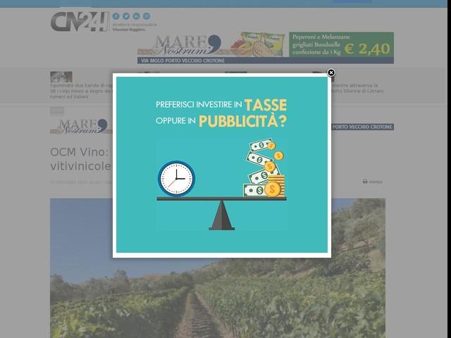 OCM Vino: quattro milioni di euro per le aziende vitivinicole