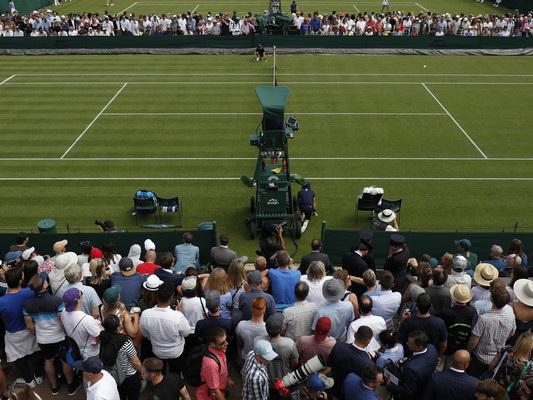 Le curiosità e le tradizioni che rendono Wimbledon un torneo unico