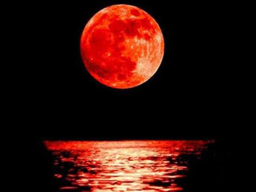Camminata al chiaro di luna a Cizzolo: l'evento è previsto per sabato 9 novembre