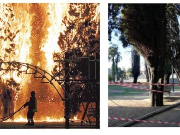 Due bambini di poco più di 10 anni dietro l'incendio alla Marcelliana: ecco come li hanno scoperti