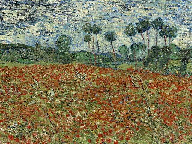"""""""Van Gogh. Tra grano e cielo"""", a Vicenza la mostra del genio della pittura. """"C'è un po' di Vincent nella vita di ognuno di noi"""""""