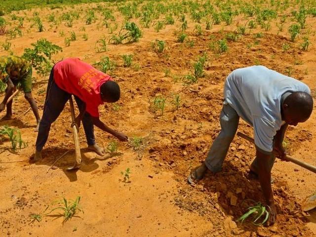 Cgil in Niger: diritto a partire, diritto a restare