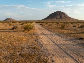 """""""Il detective selvaggio"""" di Jonathan Lethem, un'insolita ricerca nel deserto del Mojave"""