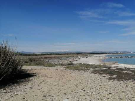 Progetto 'South Beach', i comitati 'no a epocale colata di cemento'
