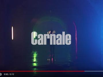 """Andrea Sannino: guarda il video di """"Carnale"""" + testo"""