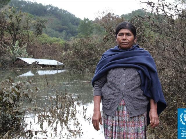 Centroamerica: shock climatici ed economici gettano milioni di persone nell'insicurezza alimentare
