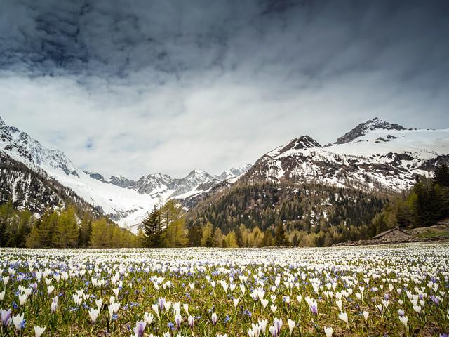 Meteo fine maggio non finisce di stupire: altra NEVE verso Alpi e Appennino