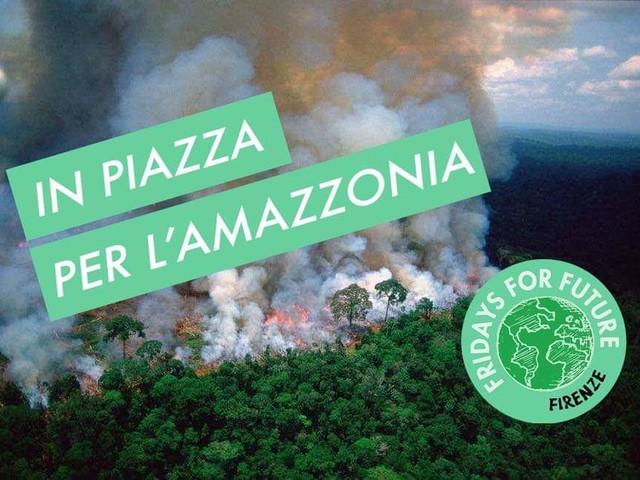SOS Amazzonia: fermiamo la strage di foresta!