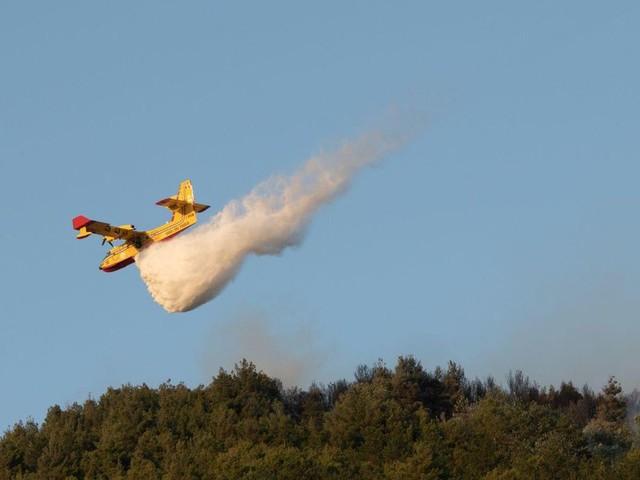 Per spegnere gli incendi abbiamo speso 80 mln di euro in tre mesi