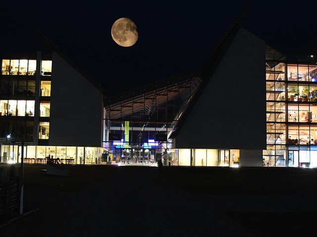 L'incredibile festa lunare del Muse più di 4 mila trentini all'assalto del museo e della nuova mostra - FOTO